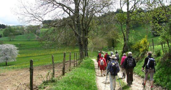 randonneurs sur le chemin de Montaigne